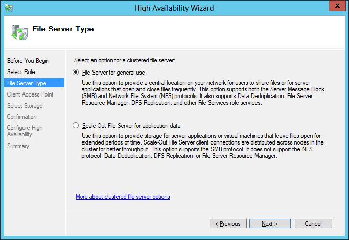 File Server Type